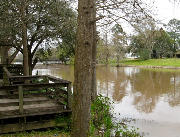 Bayou Teche in New Iberia