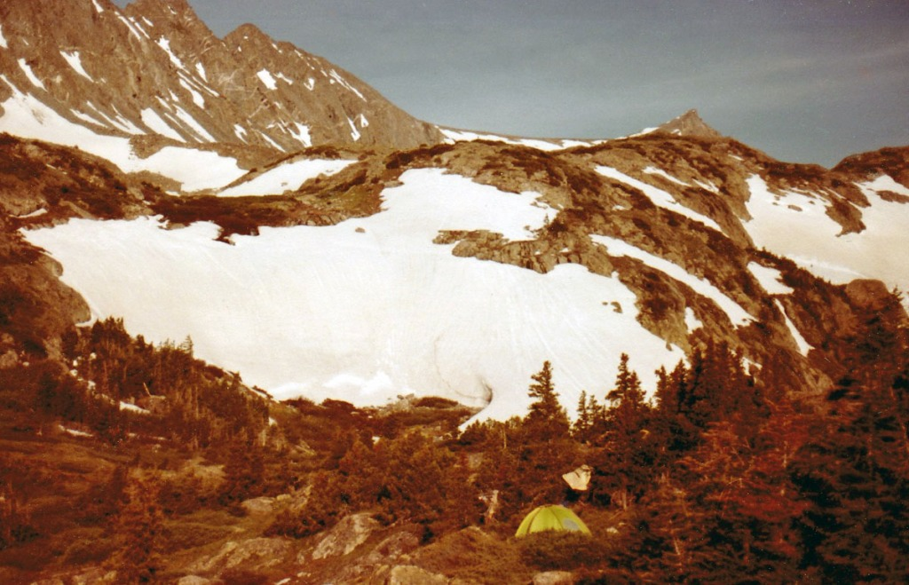 Camp high in the Rocky Mountains below a snowfield at treelike.